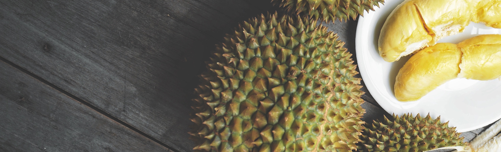 Global durian-blog