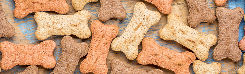 America dog treats-blog